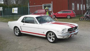 Early Mustang